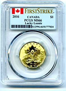 2016 Canada $1 Lucky Loonie RIO OLYMPICS Uncirculated GOLDEN FIRST STRIKE TOP POPULATION Dollar MS66 PCGS
