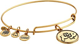 Alex and Ani - University Of Colorado Logo Charm Bangle