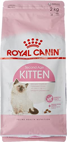 Mejor valorados en Comida seca para gatos & Opiniones útiles de ...