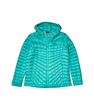 The North Face Thermoball Hoodie (Pool Green) Women