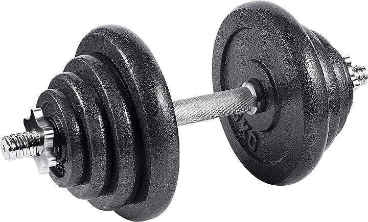 Manubri in ghisa 10 kg 15 kg 20 kg 30 kg professionali fitness homegym palestra arteesol B08MT1W7WC