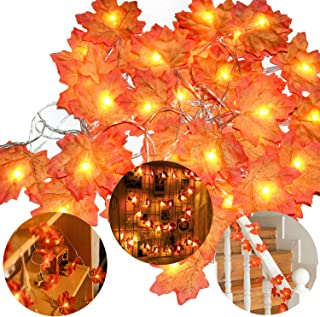 leegleri Fall Decor Maple Leaf String Lights for Thanksgiving Christmas 80 LED Maple Fall Leaf Garland Waterproof 3AA Battery for Indoor,Outdoor