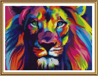 Paint with Diamonds Art Rhinestone Embroidery Cross Stitch Craft Decor 30x40 cm// 12x16 inch Reofrey 5D Diamond Painting Kit Lake Boat House Full Drill for Adults