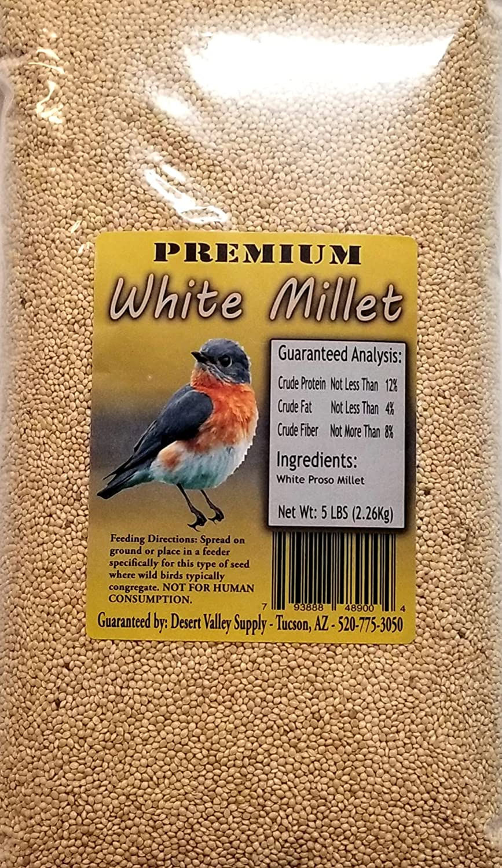 Premium White Millet Proso Seeds - Wild Bird Food- Cardinal - Finch & More (5-Pounds)