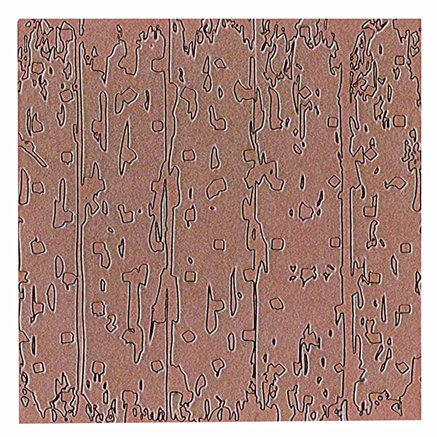 Spellbinders MT1-008 Barn Wood Texture Plate