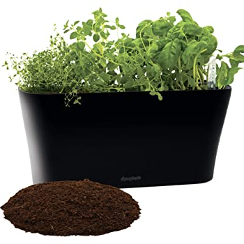Window Garden Aquaphoric Herb Garden Tub - Self Watering Planter + Fiber Soil, Keeps Indoor Kitchen Herbs Fresh and Growing for Weeks on Your Home Windowsill. Compact, Attractive and Foolproof.