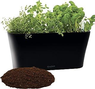 Window Garden Aquaphoric Herb Garden Tub - Self Watering Planter + Fiber Soil, Keeps Indoor Kitchen Herbs Fresh and Growin...