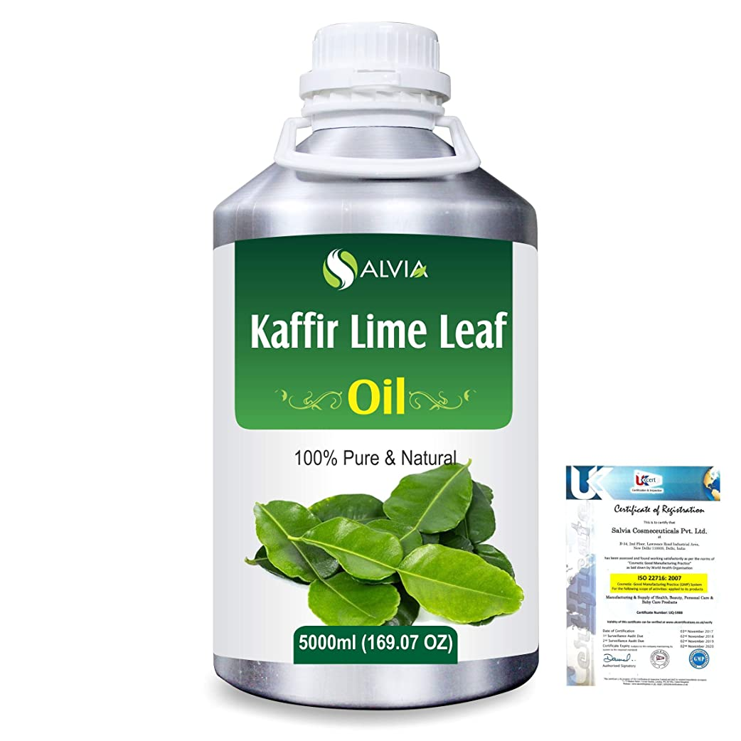 乱闘パーチナシティ紀元前Kaffir Lime Leaf (Citrus Hystrix) 100% Natural Pure Essential Oil 5000ml/169fl.oz.