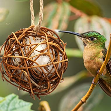 Skylety 3 Pieces Hummingbird Nesting Houses Refillable Bird Nest Hanging Balls Holder with Extra 24 Inch Long Rope and 3 Hook