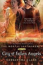 City of Fallen Angels, 4: 04