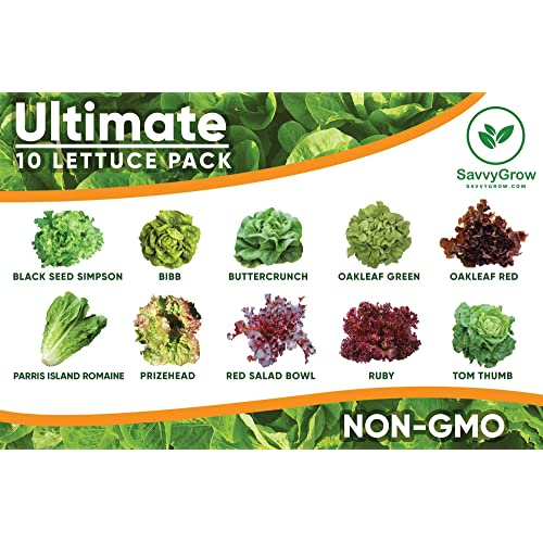 Lettuce Seeds For Planting Amazon Com