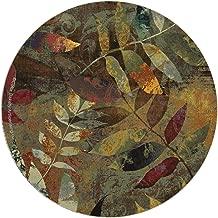 Thirstystone Autumn Soul II Coasters