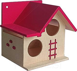 PetNest Bird House for Balcony and Garden Hanging for Love birds, Sparrow, Hummingbird, Kingfisher Birds Nest for Balcony ...