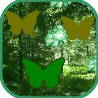 Butterfly Blasters