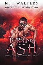 Burning Ash (Forgotten Brotherhood Book 3)