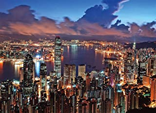 Tomax Hong Kong Night Scene 500 Piece Glow-in-the-dark Jigsaw Puzzle