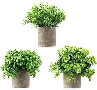 artificial plants for the office