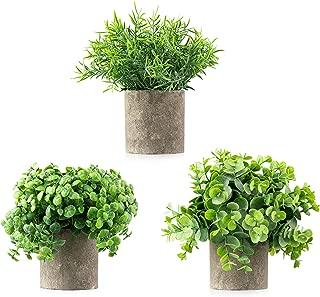 Best indoor plants artificial Reviews