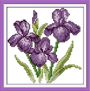 Discus Stamped Cross Stitch Kit 6/ /×/ 8 inches for Beginners Premium European Quality