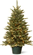 National Tree Company Artificial Christmas Tree For Entrances | Includes White Lights and Pot | Everyday Collections - 3 ft
