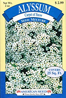 American Seed AS20AL Alyssum Seed Mixture, Carpet of Snow, 25 Square Foot Shaker Box (2 Ounce)