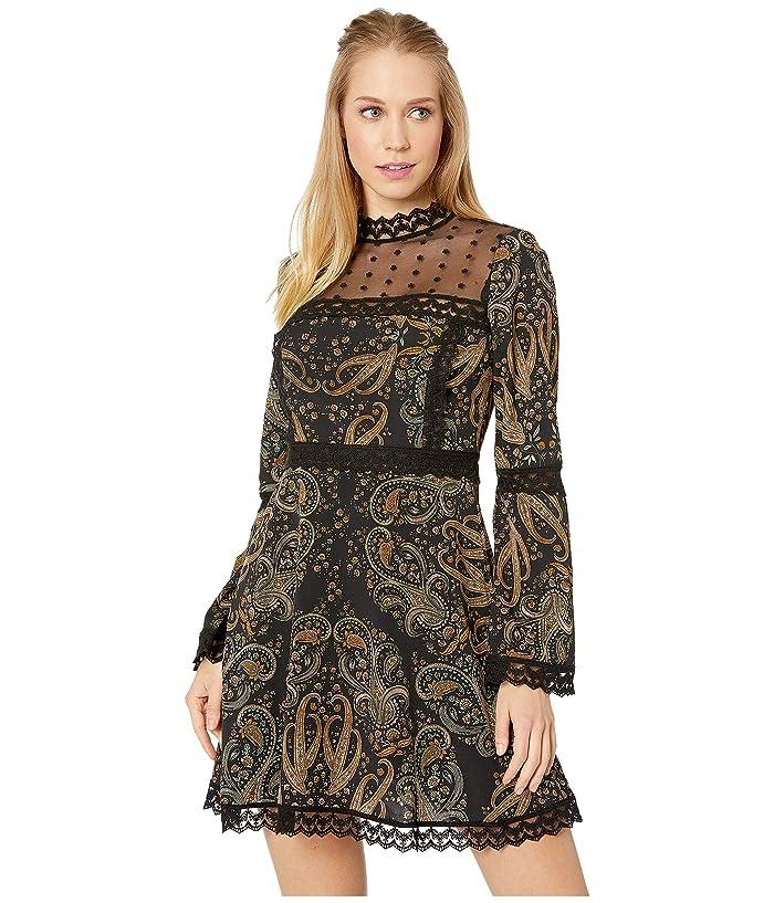 Cupcakes and Cashmere Jaida Mesh Yoke Print Dress (Black) Women