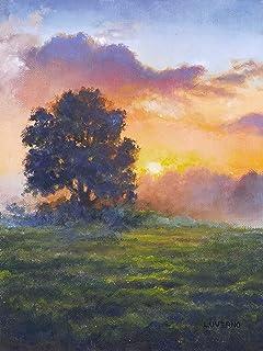 Cuadro al oleo original en enmarcado de un paisaje de campo. Ideal para regalo