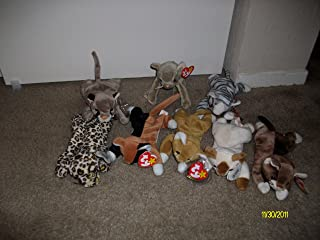 Set of 8 Cat/Kitten Beanie Baby's-(Chip,Scat,Freckles,Nip,Canyon,Prance,Pounce, and Snip)
