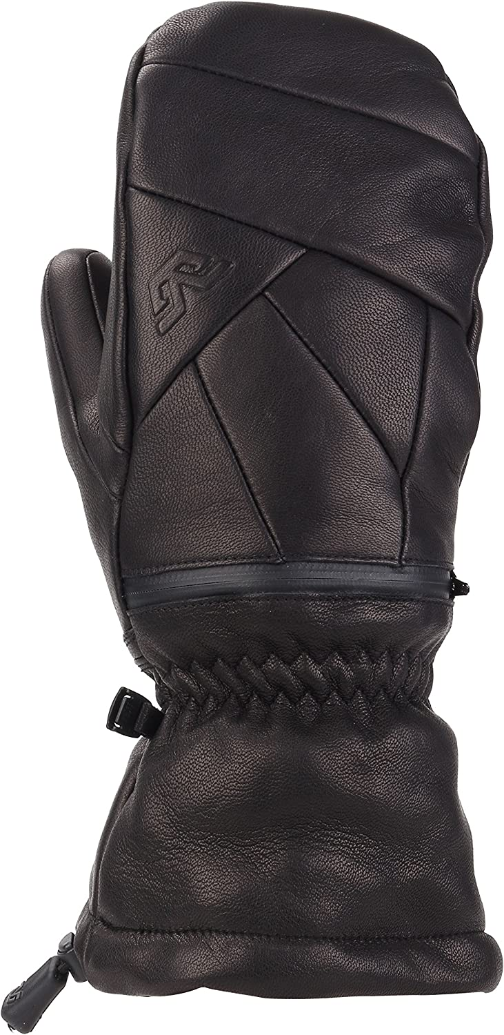 Special Special price for a limited time price for a limited time Gordini Men's Leather Goose Iv Insulated Mittens