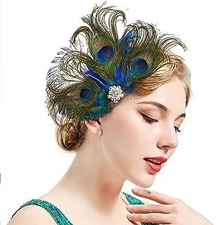 Best peacock hair clip Reviews