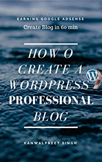 How To Create A Wordpress Professional Blog: Create A Website Using Wordpress (k Book 1) (English Edition)