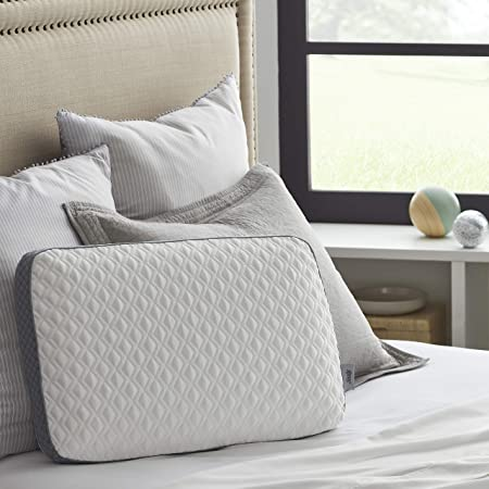 Sealy Molded Memory Foam Pillow, 1 Count (Pack of 1), White, Grey