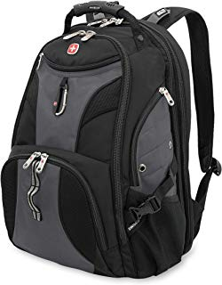 SwissGear Travel Gear 1900 Scansmart TSA Laptop Backpack - Gray