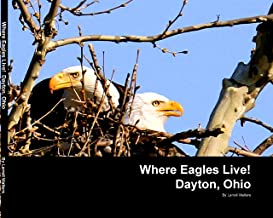 the eagle dayton