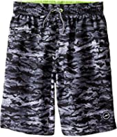 Speedo Kids - Sharkamo Volley Shorts (Little Kids/Big Kids)