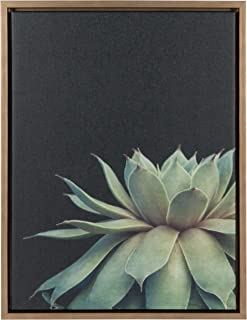 Kate and Laurel Sylvie Succulent Framed Canvas Wall Art by F2 Images, 18x24 Gold