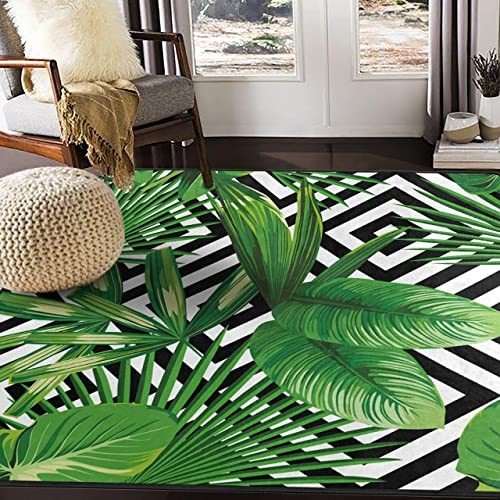 Leaf Rugs Amazon Com