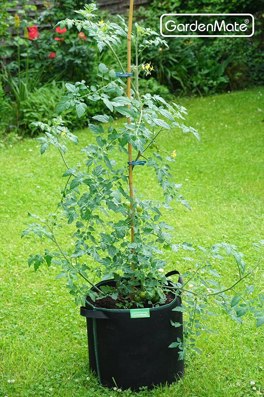 GardenMate 6X 60L Pflanzsack aus Vliesstoff /Ø45.5cm H/öhe 40cm GREENLINE