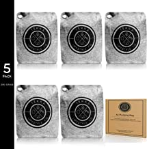 TERRA LIFESTYLE CO - 5 Pack 200G Bamboo Charcoal Air Purifying Bag | Car Air Freshener | Car Air Purifier | Moisture Absorber | Odor Eliminators | Bathroom Room Freshener | Activated Charcoal Bags RV