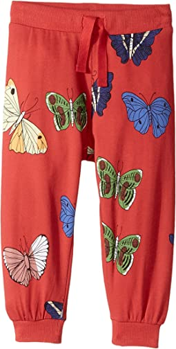 mini rodini - Butterflies Sweatpants (Infant/Toddler/Little Kids/Big Kids)