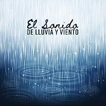 El Sonido de Lluvia y Viento - Musicoterapia para Conciliar el Sueño, Relajarse, Momentos Placenteros, Sensaciones Reconfortantes