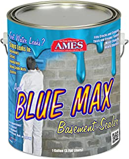 Best rubber paint for wall Reviews