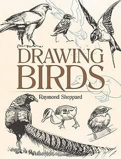 Drawing Birds (Dover Art Instruction)