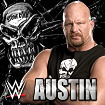 Best stone cold song mp3 Reviews