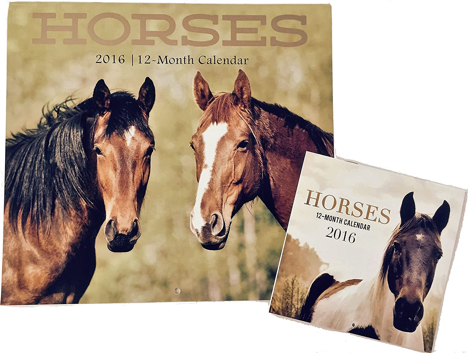 2016 Horses 12 12 12 Month 12x11 Plus Miniature with Moon Phase Wall Calendars by JOT B0147LDLMG | Wunderbar  1fb0e9