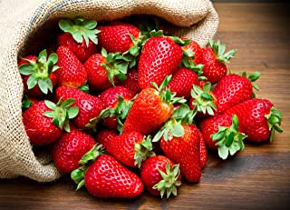 500pcs Strawberry Seeds Planting Everbearing Fruit Plant Home Garden Sweet and Delicious