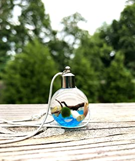 Marimo Moss Ball Necklace Live Terrarium Necklace Wearable Plant Necklace Plant Fashion Accessories - Sky Blue
