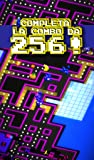 Immagine 2 pac man 256 labirinto arcade