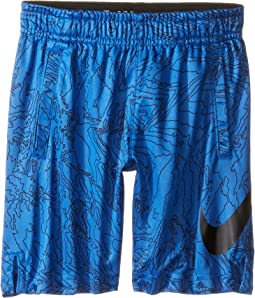 Dry Aop Fly Shorts (Toddler)