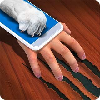Cat Hand Simulator